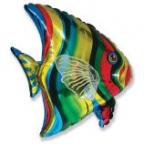 Шар Тропическая рыбка